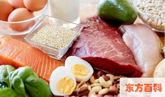 哪些食物蛋白质含量高 含蛋白质高的几种食物插图