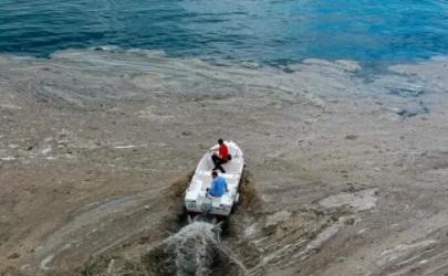 土耳其海鼻涕是什么东西