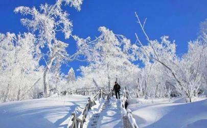 今年北方的冬天会很冷吗(今年北方为什么这么冷)